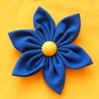 b53c4a1822f Modrá kytka (brož)